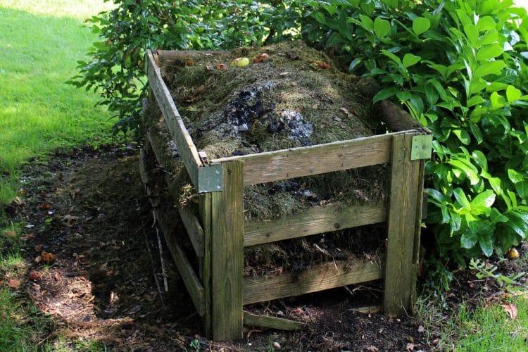 Kompostowanie dla początkujących. Jak założyć i prowadzić kompostownik