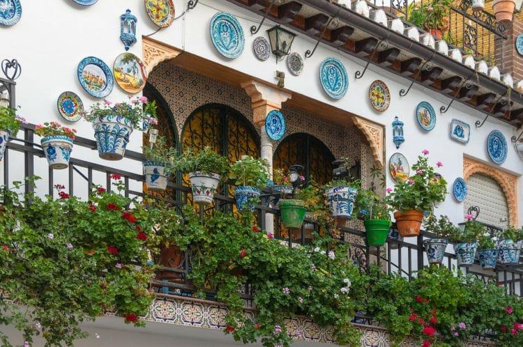 Jak założyć ogródek na balkonie? Porady ogrodnika