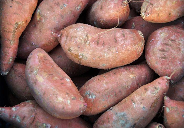 Słodkie bataty. Doskonały zamiennik ziemniaków.