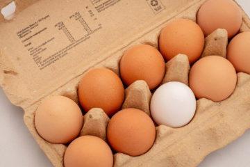 Wegetariańskie sznycle - kotlety jajeczne
