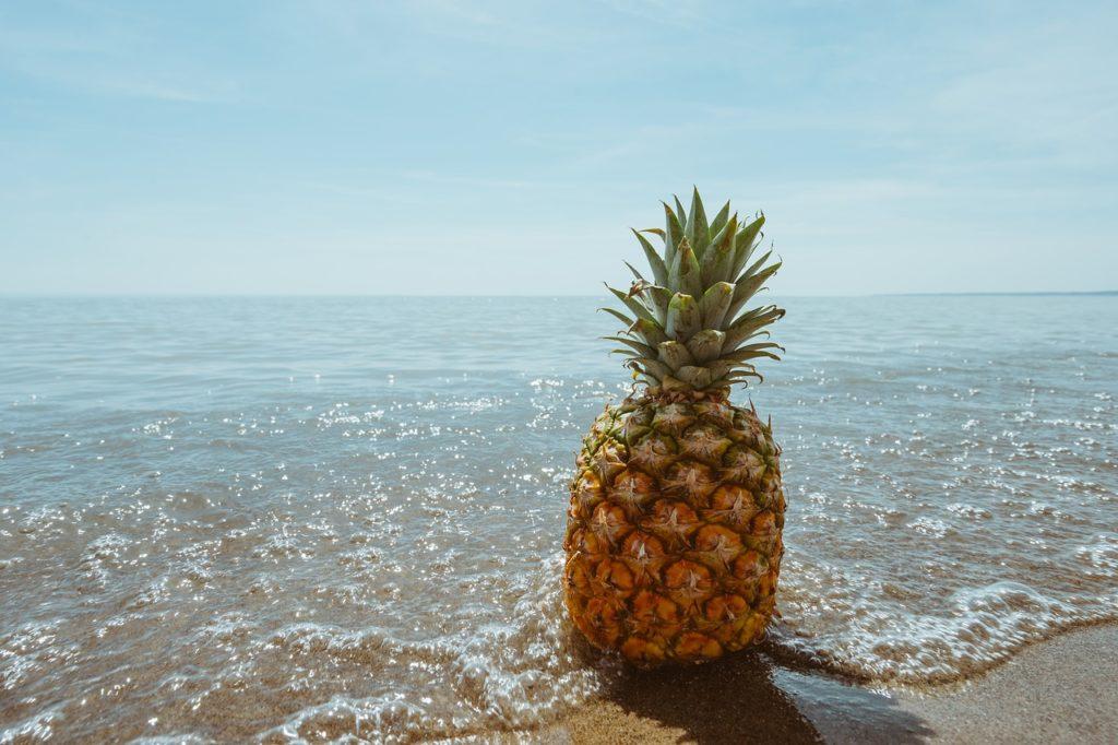Ananas. Historia jak pojawił się na stołach.
