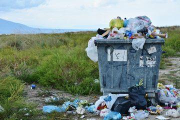 Nowy trend eko. Lodówka zero waste