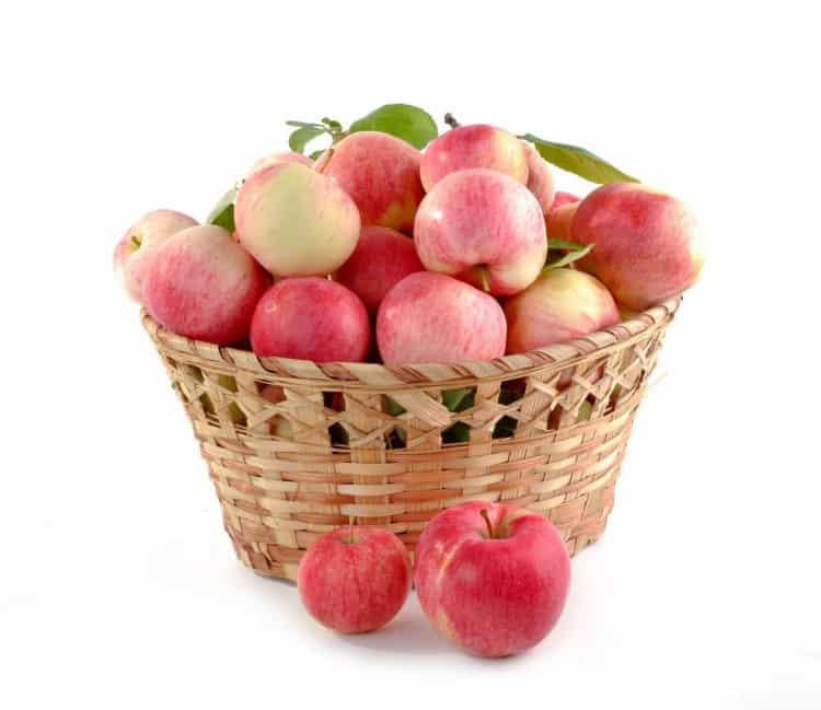 Prażone jabłka na szarlotkę zamknięte w słoiku