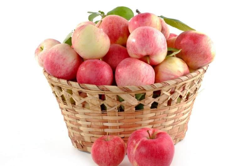 Mus z prażonych jabłek do słoików