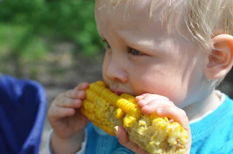 Dlaczego pozwalać dzieciom jeść to, na co mają ochotę?