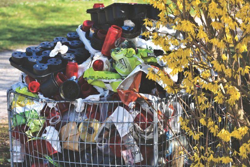 Zero waste na 7 sposobów. Kroki dla naszej planety!